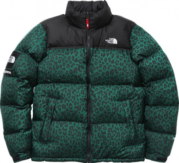 supreme-the-north-face-nuptse-down-jacket-005-570x520